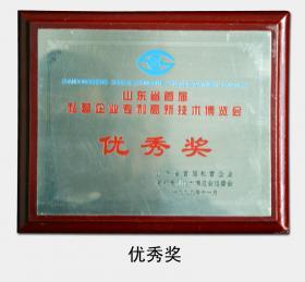 """1999年被评为""""山东省首届私营企业专利高新技术博览会优秀奖"""""""
